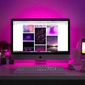 Transform Web Design Elena Rahrig